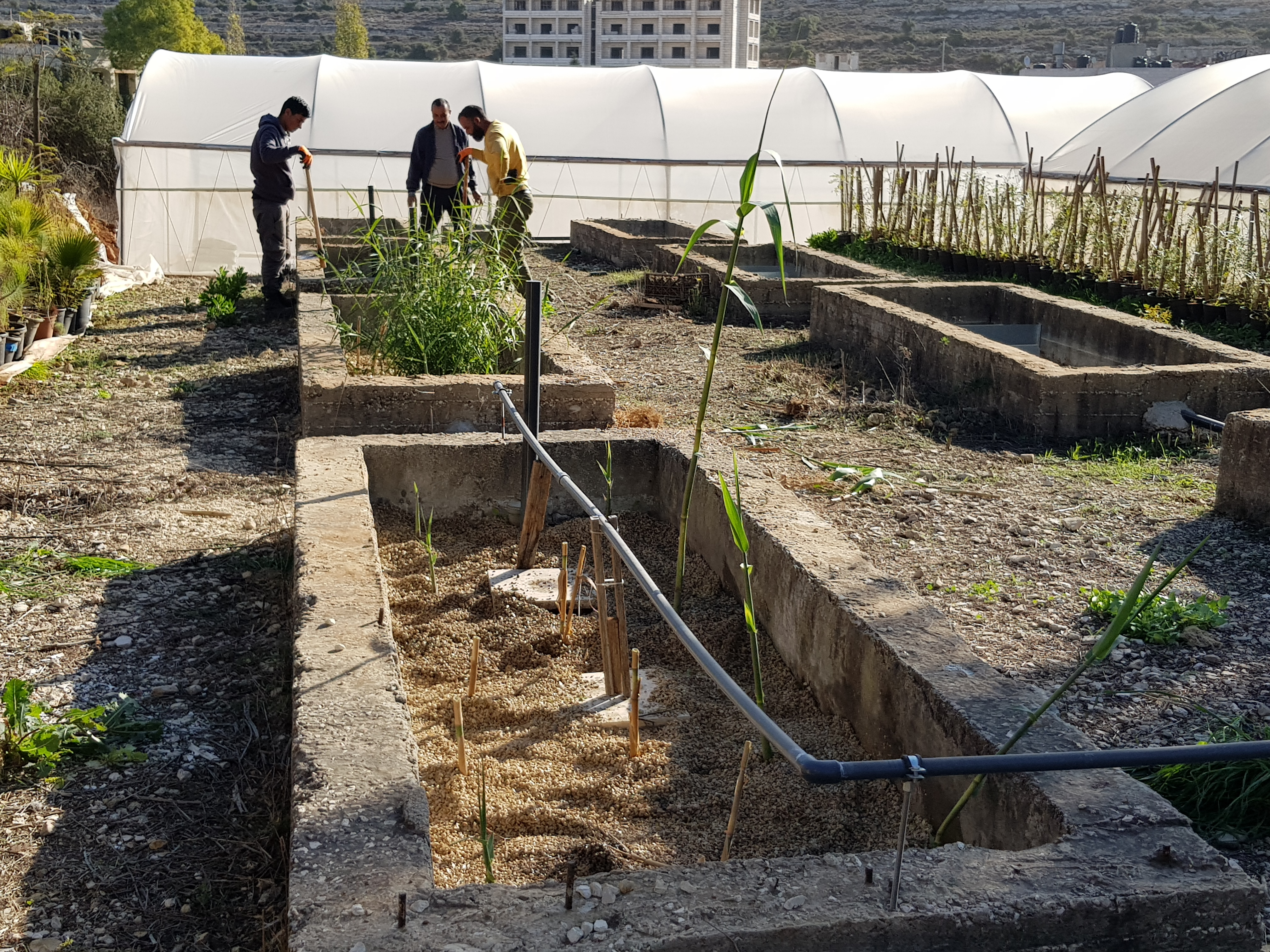 Sustainable Industrial Wastewater Management in Palestine